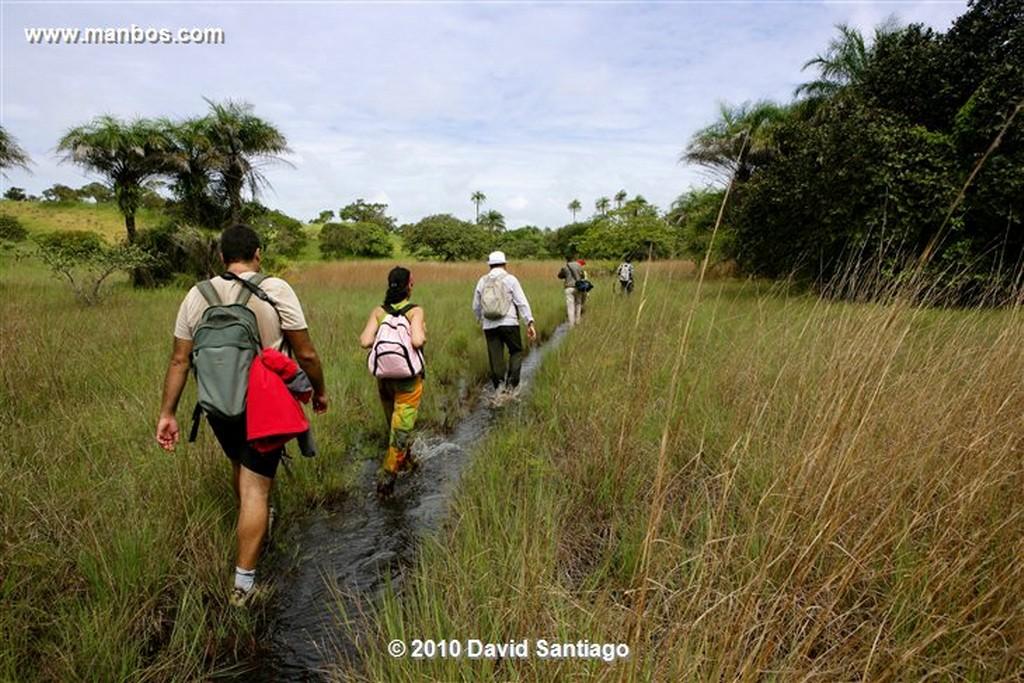Islas Bijagos  Camino Parque Nacional Orango Grande Bijagos Guinea Bissau  Islas Bijagos