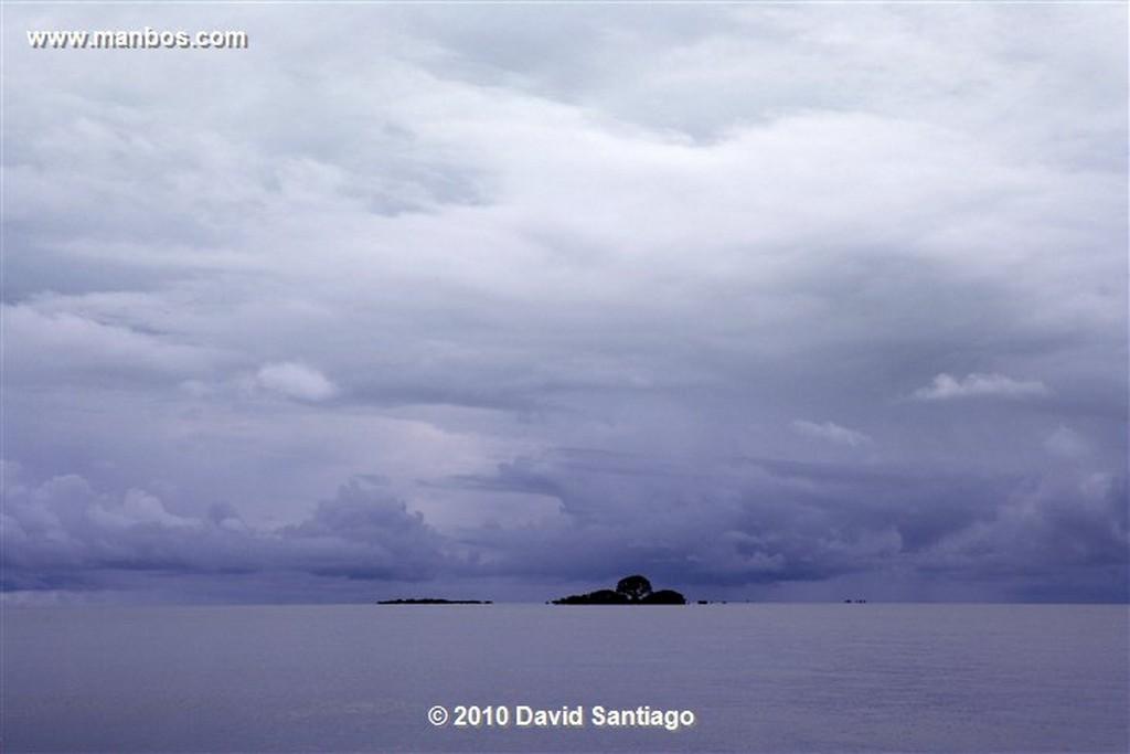 Islas Bijagos  Cangrejo  Islas Bijagos