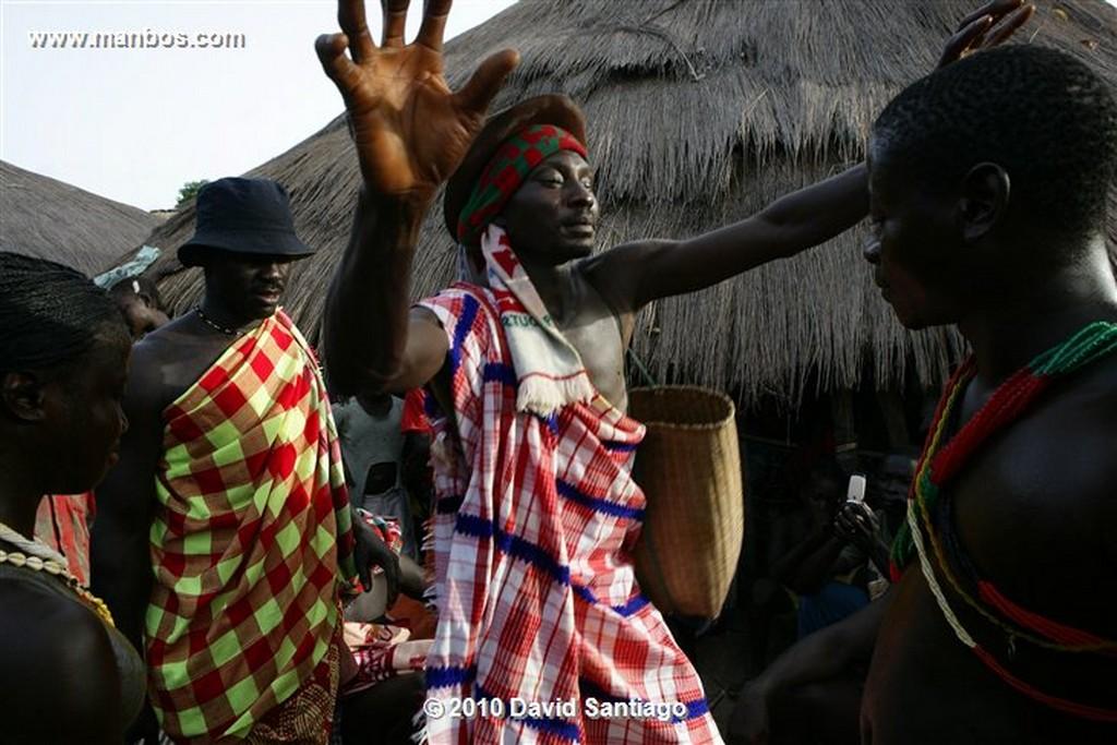Islas Bijagos  Ceibas P n Orango Poilao Bijagos Guinea Bissau  Islas Bijagos
