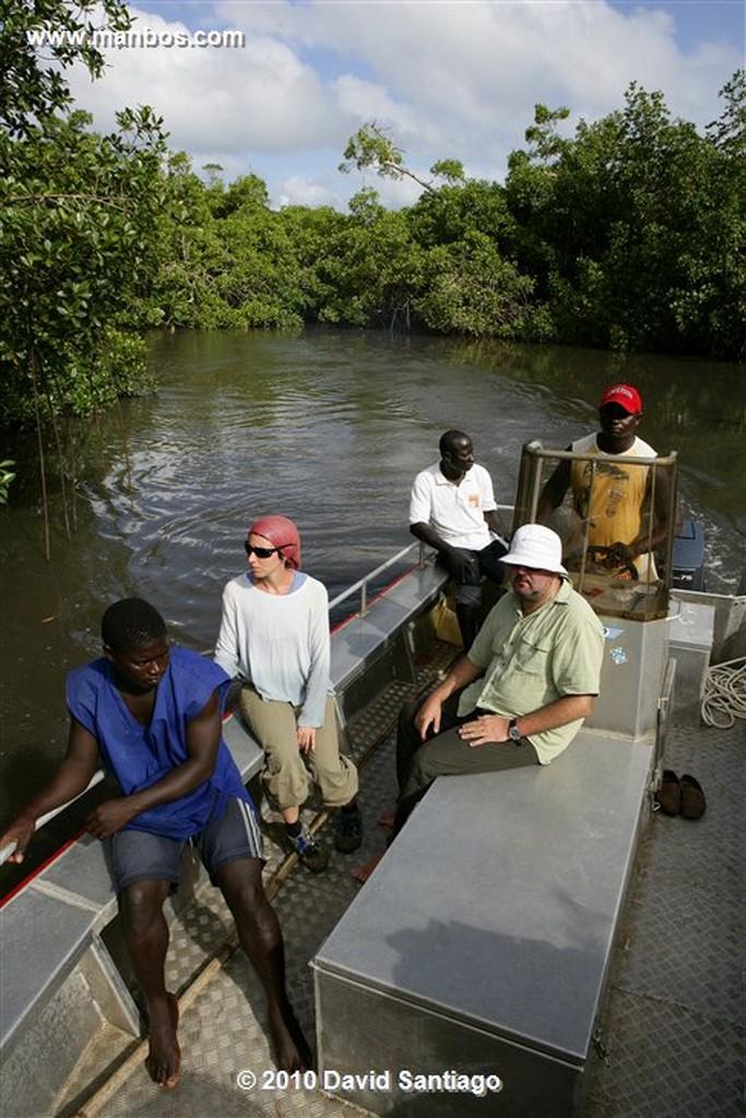 Islas Bijagos  Desembarcos P n Orango Guinea Bissau  Islas Bijagos