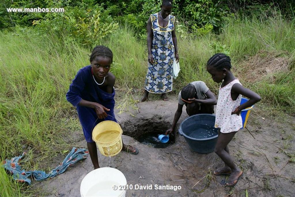 Islas Bijagos  Habitantes P n Orango Guinea Bissau  Islas Bijagos