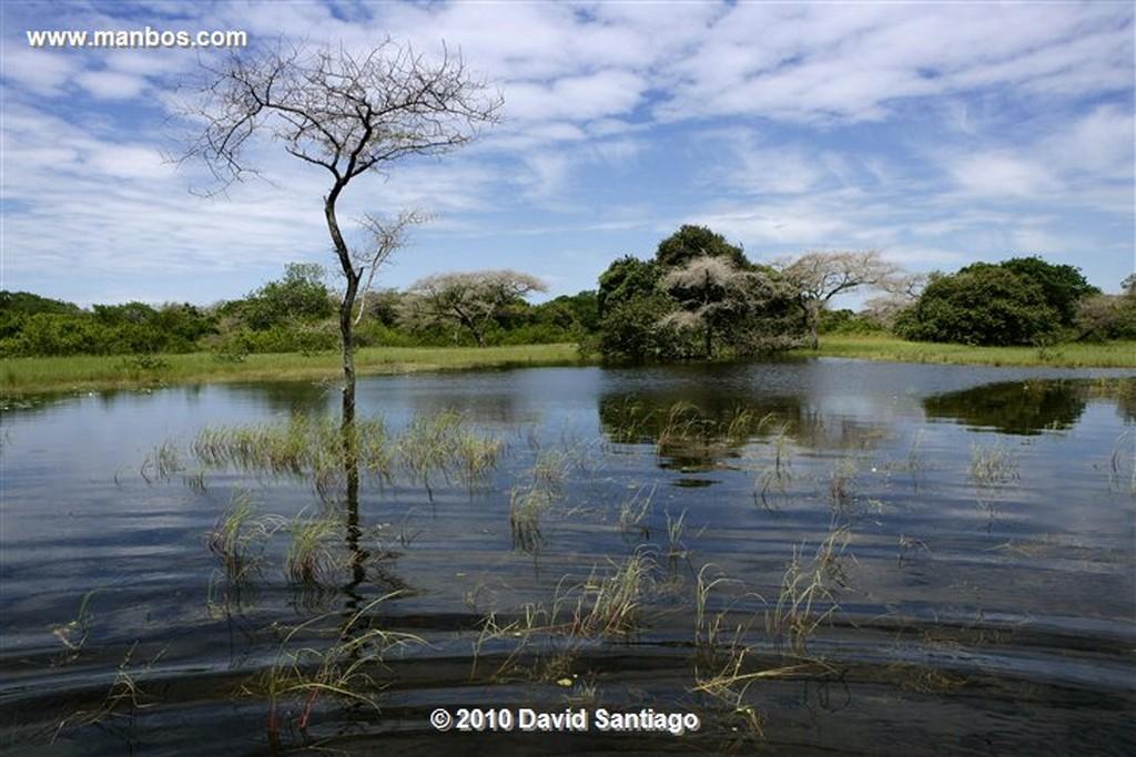 Islas Bijagos  Laguna de Anor P n Orango Archipielago Bijagos Guinea Bissau  Islas Bijagos