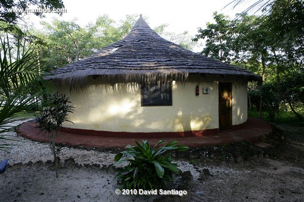 Islas Bijagos  Orango Parque Hotel Parque Nacional Orango Bijagos Guinea Bissau  Islas Bijagos