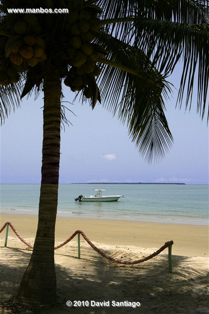 Islas Bijagos  Parque Nacional Joao Vieira Poilao Bijagos Guinea Bissau  Islas Bijagos