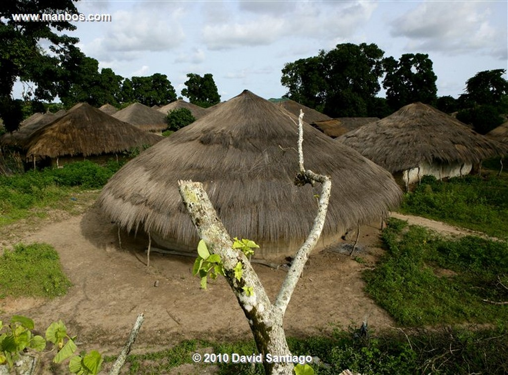 Islas Bijagos  Tabanca Eticoga Parque Nacional Orango Bijagos Guinea Bissau  Islas Bijagos