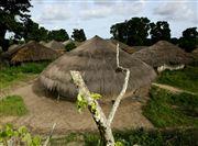 Photo of Bissagos Islands, Orange Islands National Park, Guinea-Bissau - Tabanca Eticoga Parque Nacional Orango Bijagos Guinea Bissau