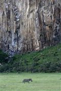 Hells Gate National Park , Hells Gate National Park, Kenia