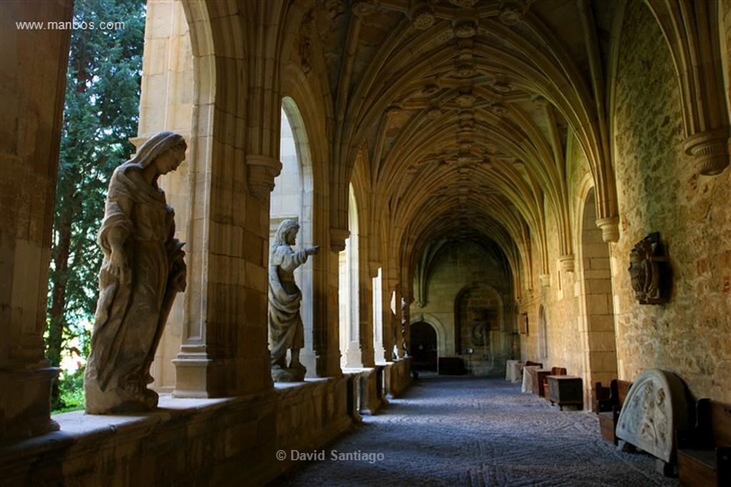 Leon Columna y capitel junto a San Isidoro en Leon Leon