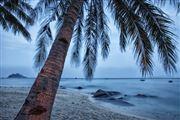 Camara Canon EOS 5D Mark II Palau Tioman Island Malasia PALAU TIOMAN ISLAND Foto: 30422