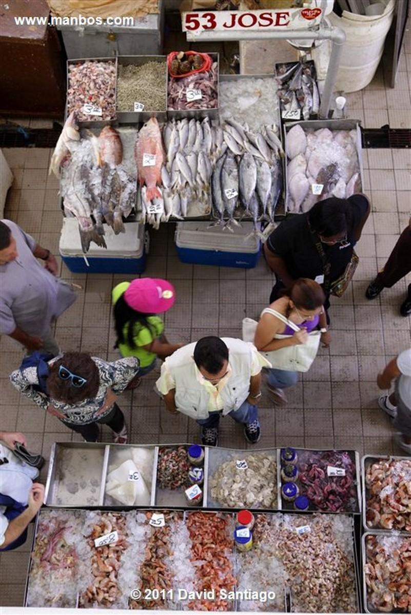 Panama Fish Market In Panama City Panama