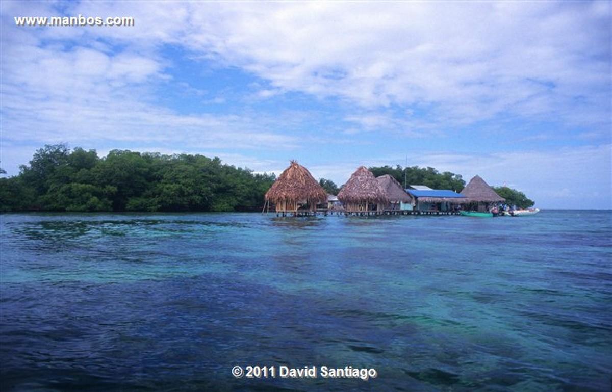 Panama Isla Bastimentos Marine National Park  bocas del Toro  panama Panama