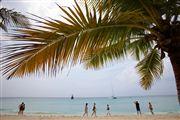 Saona Island, Saona Island, Republica Dominicana