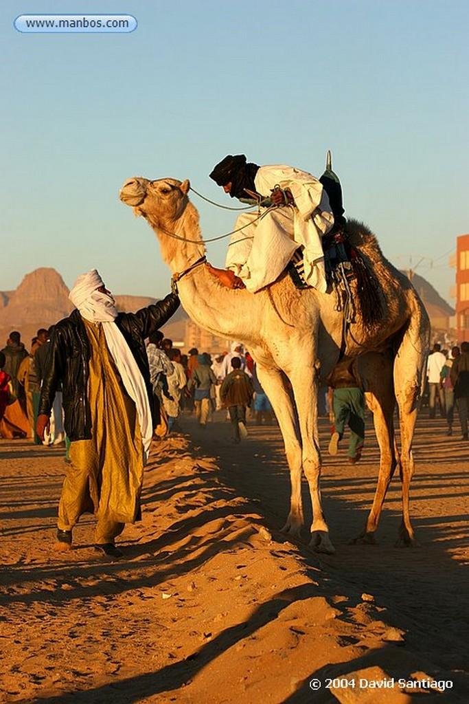 Tamanrasset Carrera de Camellos en el Festival de Turismo Sahariano de Tamanrasset - Argelia Argelia