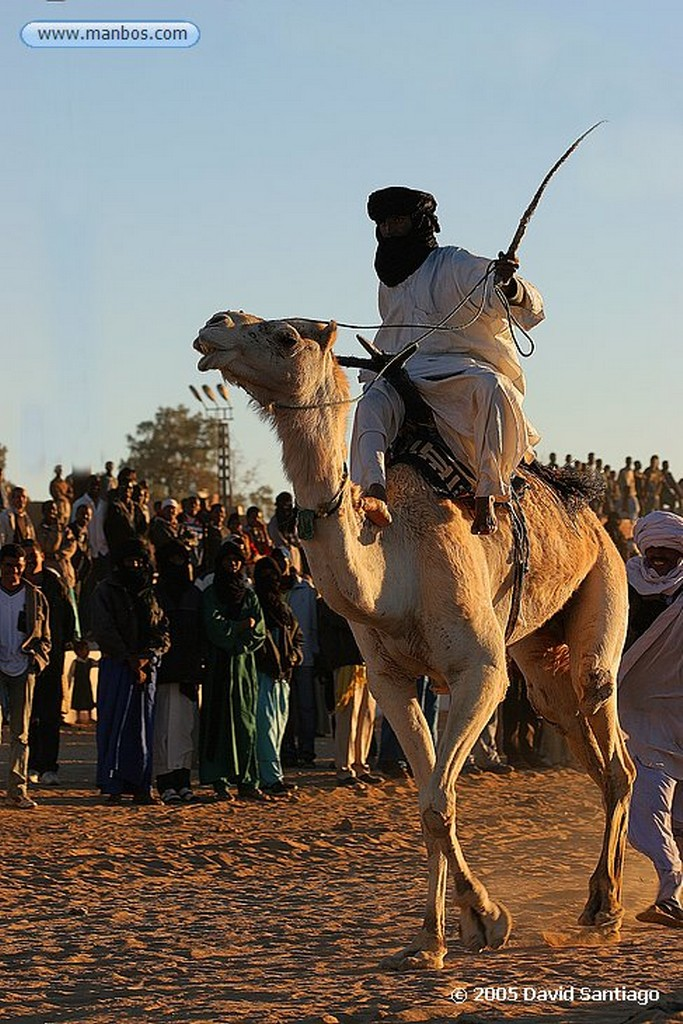 Tamanrasset Carrera de Camellos en el Festival de Turismo Sahariano de Tamanrasset Argelia