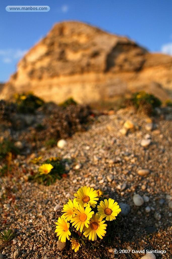 Cabo de Gata CALA DEL CUERVO, LAS NEGRAS Almeria