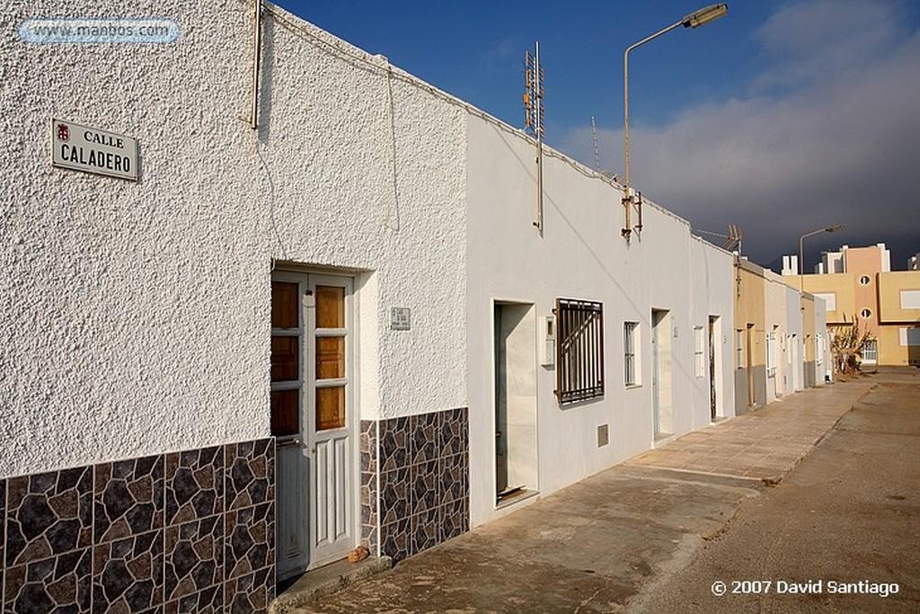 Cabo de Gata Asphodelus Almeria