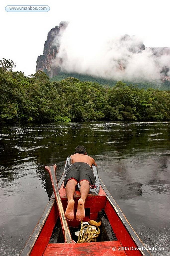 Parque Nacional Canaima Curiaras, camino al Salto del Angel Bolivar