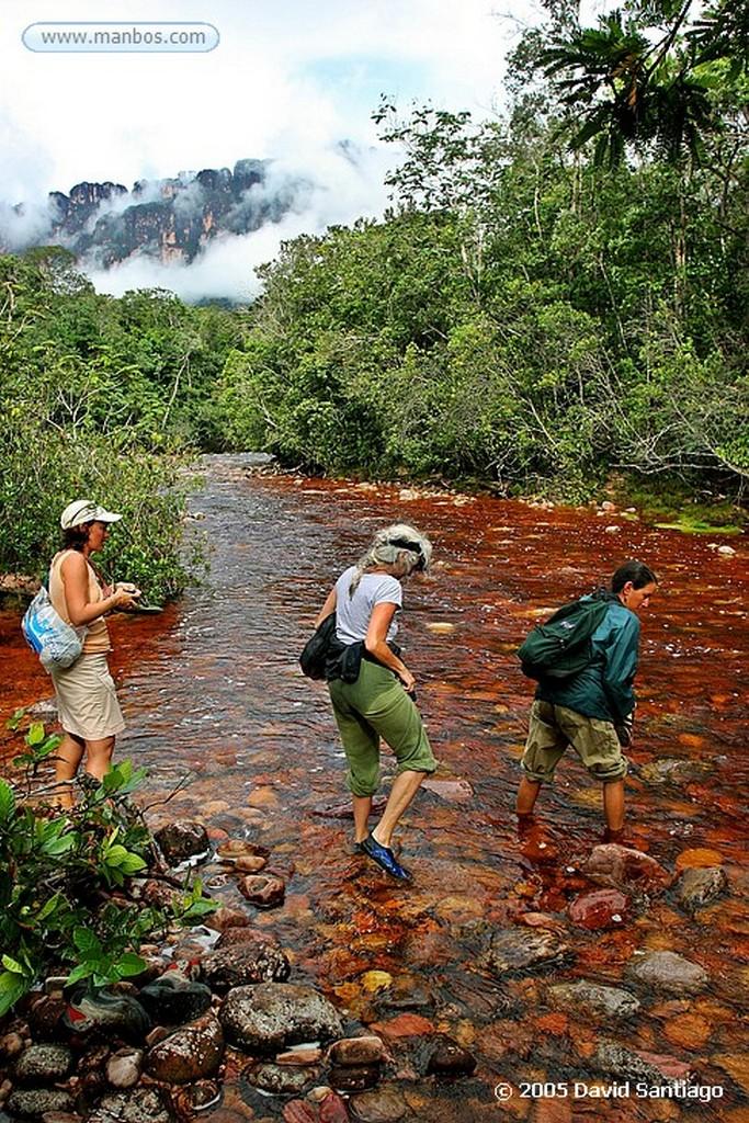 Parque Nacional Canaima Curiara bajando por el rio Churun Bolivar