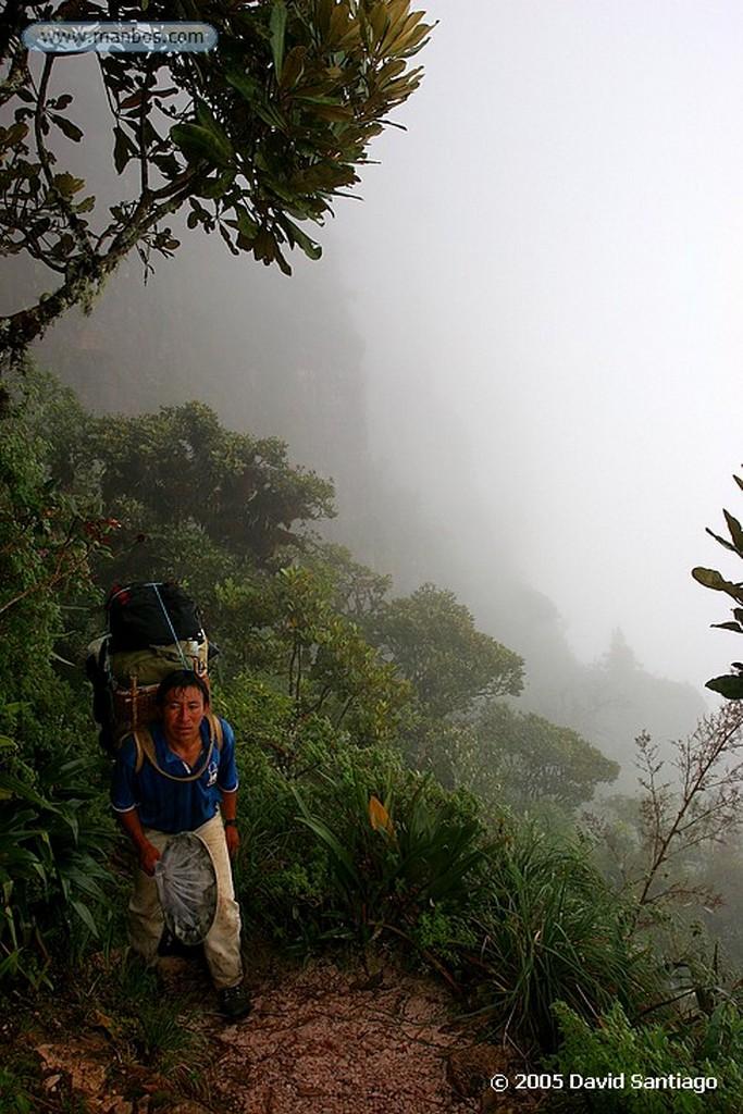 Parque Nacional Canaima Porteador Pemon Bolivar