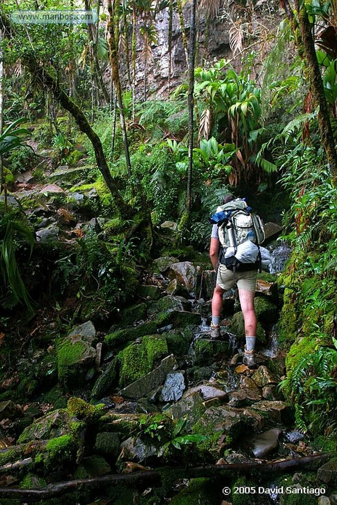 Parque Nacional Canaima Indicador Parque Canaima Bolivar