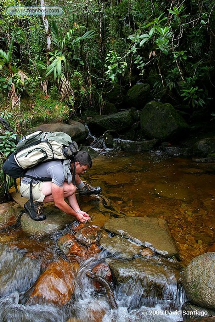 Parque Nacional Canaima Campamento en la base del Roraima Bolivar