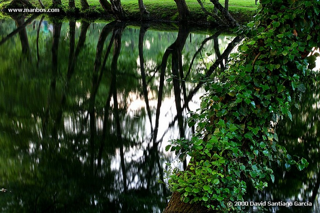 Parque Natural Baixa Limia Mantis religiosa Ourense