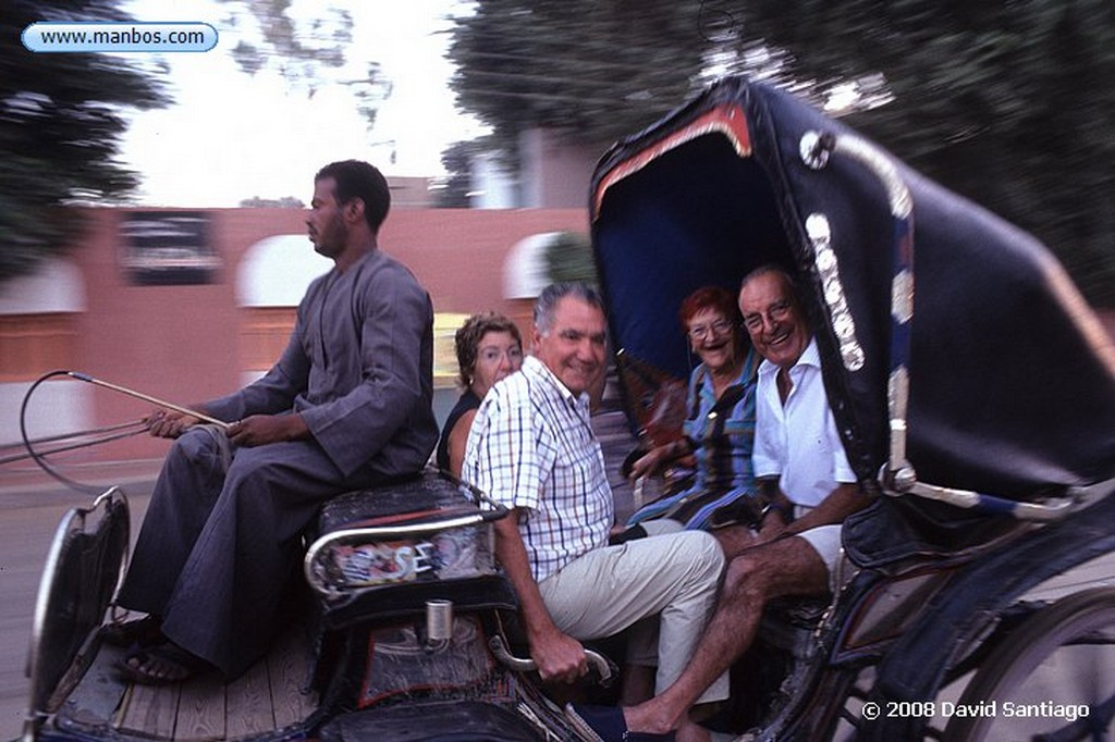 Cairo Calesa en Hedfu Cairo
