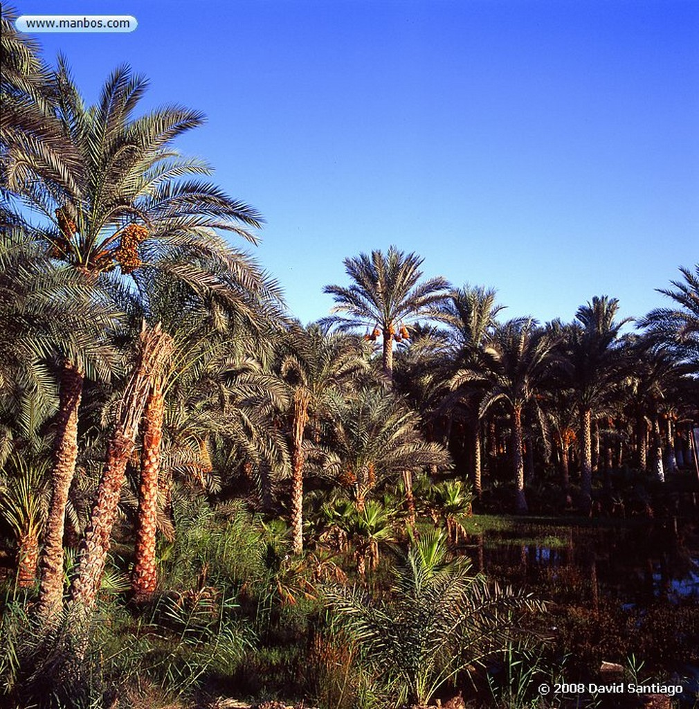 Rio Nilo Orilla del Nilo Rio Nilo