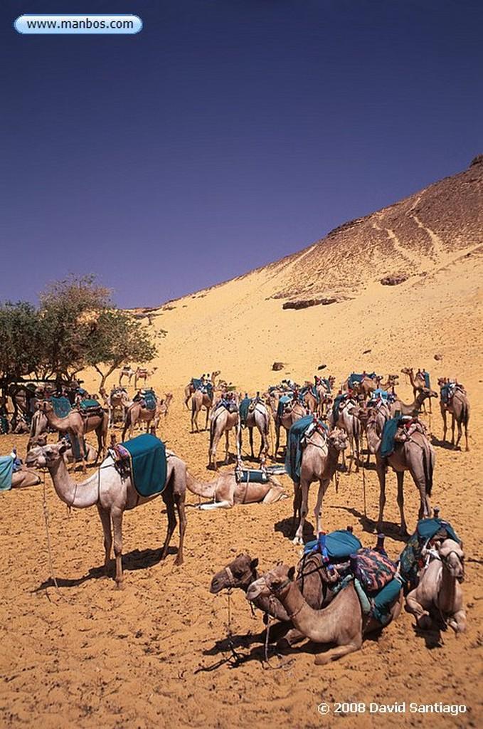 Asuan Ruta por poblado Nubio-Asuan Asuan