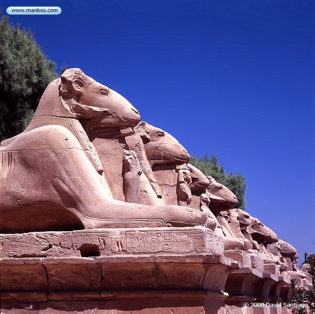 Edfu Templo de Horus-Edfu Edfu