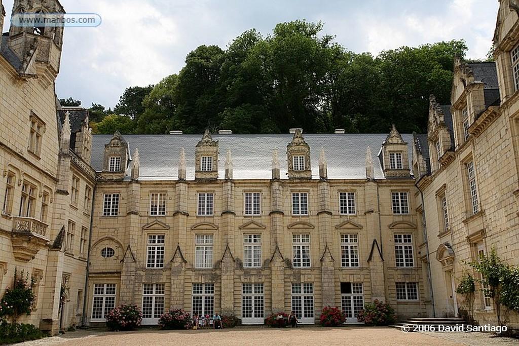 Valle del Loira La Ultima Cena  parque de le Clos-luce del Castillo de Amboise Pays de la Loira