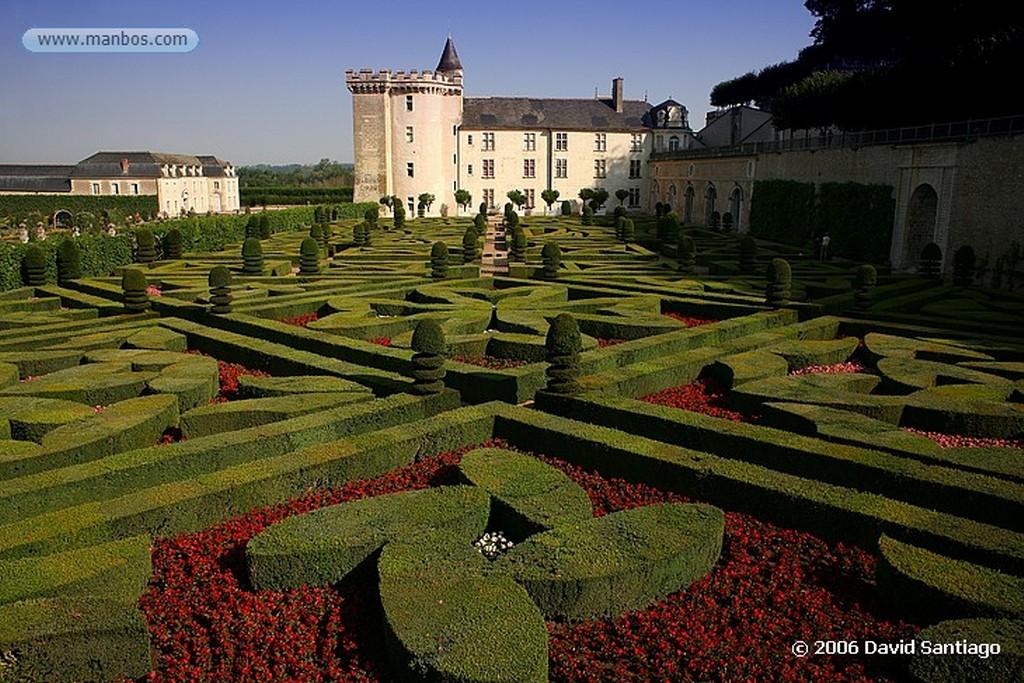 Valle del Loira Campo de Flores Pays de la Loira