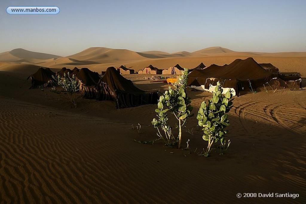 Erg Chigaga Campamento de Sahara Service en Erg Chigaga Marruecos