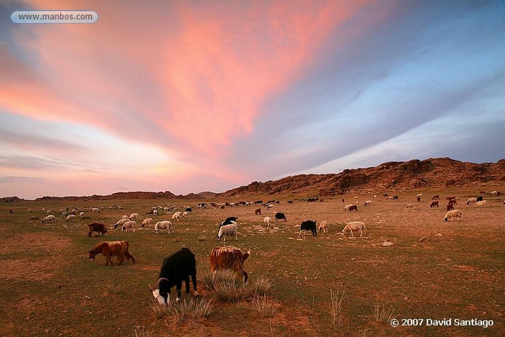 Desierto del Gobi Cañón de Yolyn Am (Gobi) Mongolia