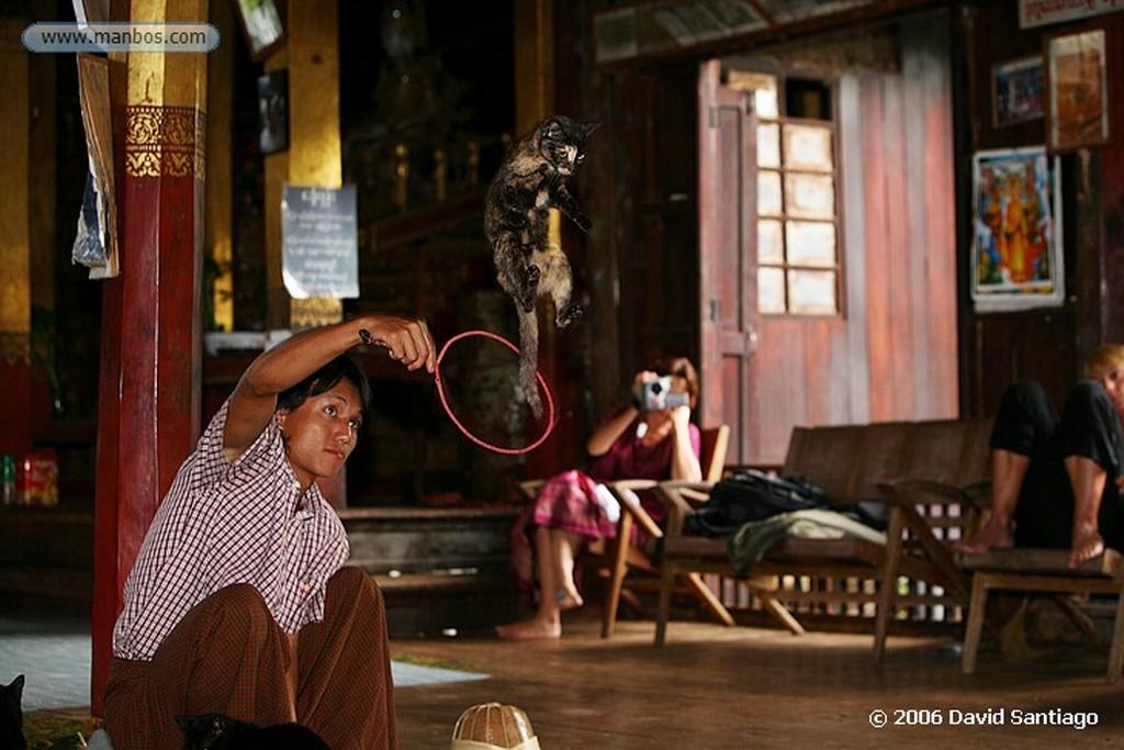 Lago Inle Nga Hpe Chaung en el Lago Inle Myanmar Lago Inle