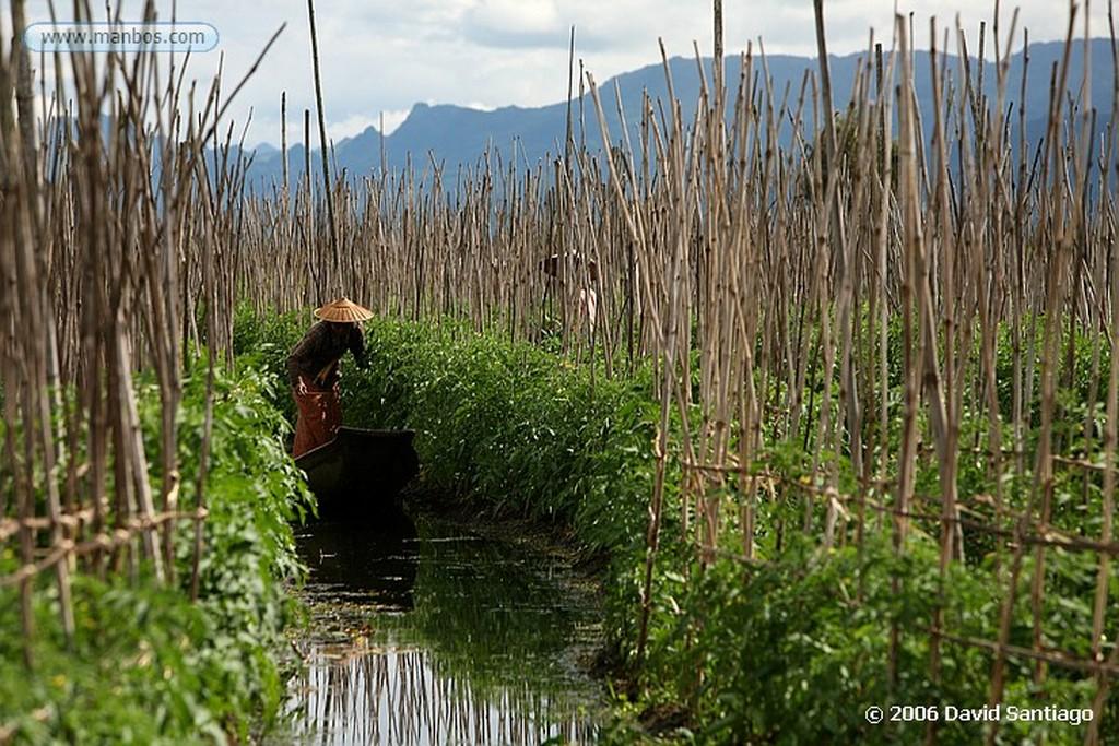 Lago Inle Lago Inle Myanmar Lago Inle