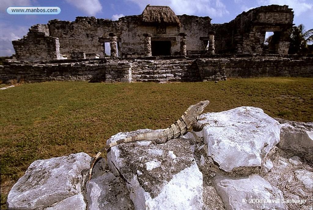 Sayil Mirador de Sayil - Yucatán - México Yucatan