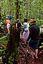 Parque Nacional Canaima Subida a la base del Salto del Angel Bolivar