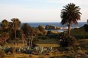 Foto de Cabo de Gata, España - PALMERAL E  ISLETA DEL MORO ARRÁEZ