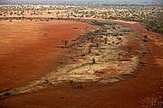 Adelei, Parque Nacional de Zakouma, Chad