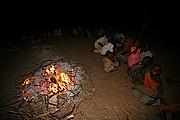Ibir, Parque Nacional de Zakouma, Chad