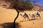 Poblado Nubio, Asuan, Egipto