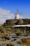 Photo of Lanzarote, Cactus Garden, Spain - Jardin de cactus