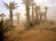 Foto de Tamegroute, Marruecos
