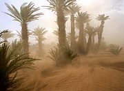 Tamegroute, Tamegroute, Marruecos