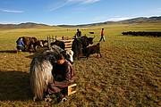 Shine Ider, Shine Ider, Mongolia