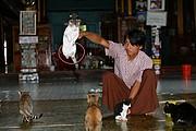 Nga Hpe Chaung, Lago Inle, Myanmar