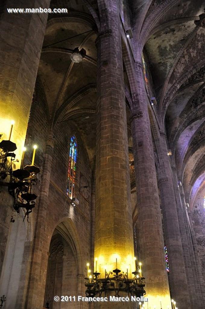 Palma de Mallorca  Catedral de Palma  Palma de Mallorca