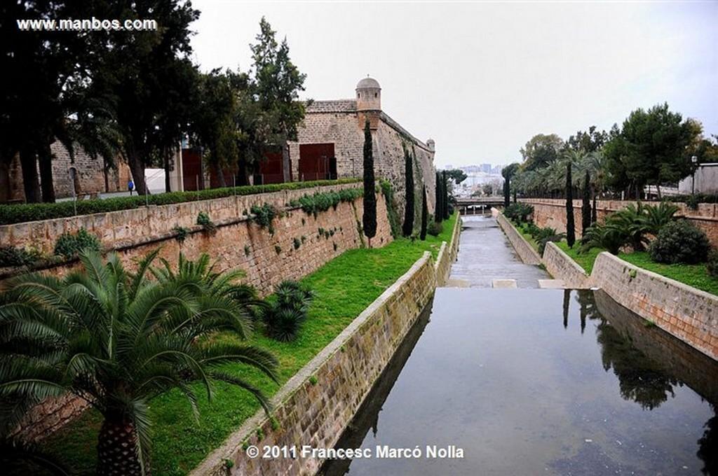 Palma de Mallorca  Claustro de La Catedral  Palma de Mallorca