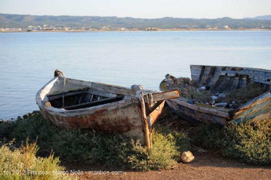 El Delta del Ebro A Primera Hora del Dia  Tarragona